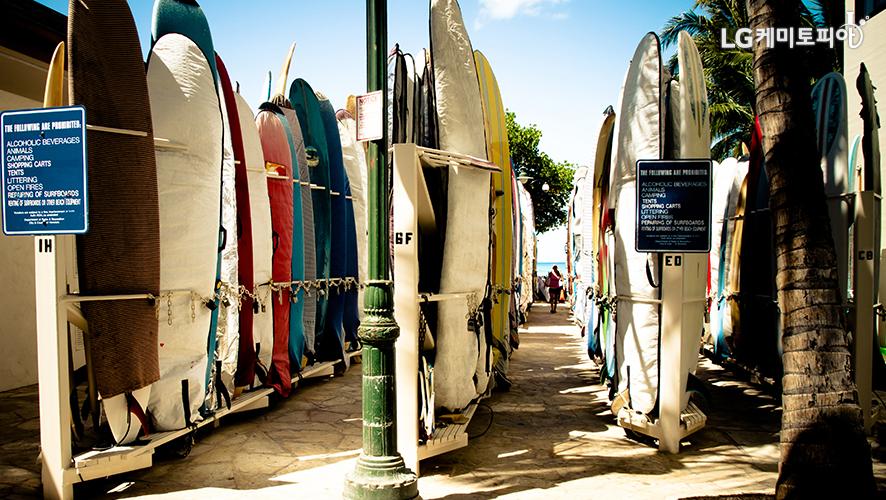 다양한 색깔의 서핑보드가 3열로 나란히 세워져 있다.