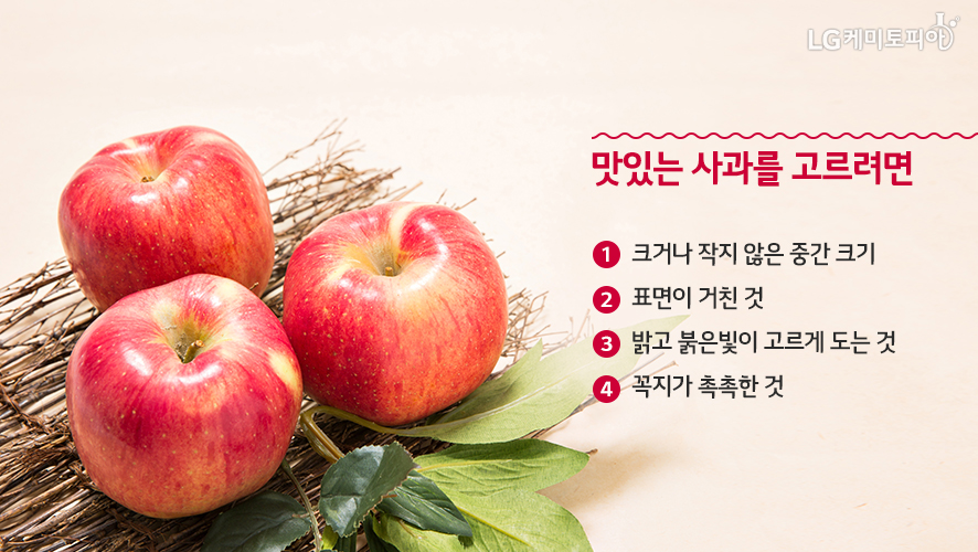 맛있는 사과를 고르려면! ① 크거나 작지 않은 중간 크기 ② 표면이 거친 것 ③ 밝고 붉은 빛이 고르게 도는 것 ④꼭지가 촉촉한 것