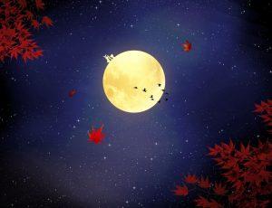 밤하늘의 보름달
