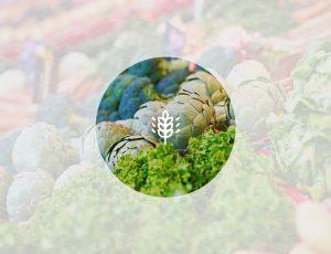마트에 진열된 다양한 이색채소