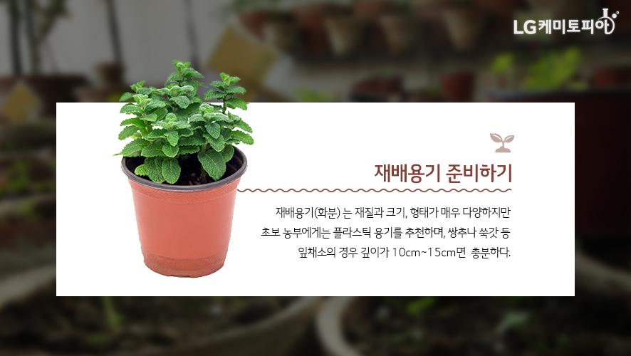 재배용기 준비하기 : 재배용기(화분) 는 재질과 크기, 형태가 매우 다양하지만 초보 농부에게는 플라스틱 용기를 추천하며, 쌍추나 쑥갓 등 잎채소의 경우 깊이가 10cm ~ 15cm면 충분하다.