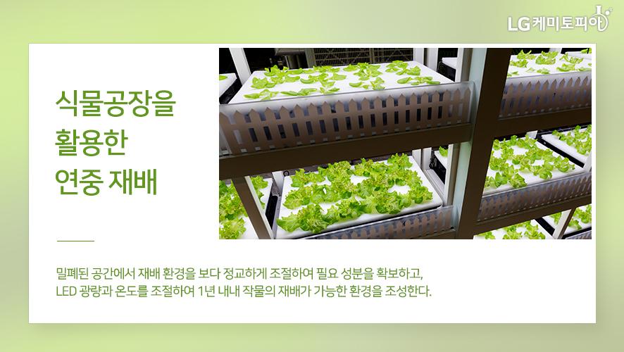 식물공장을 활용한 연중 재배: 밀폐된 공간에서 재배 환경을 보다 정교하게 조절하여 필요 성분을 확보하고, LED 광량과 온도를 조절하여 1년 내내 작물의 재배가 가능한 환경을 조성한다.