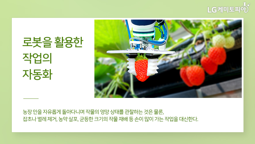 로봇을 활용한 작업의 자동화: 농장 안을 자유롭게 돌아다니며 작물의 영양 상태를 관찰하는 것은 물론, 잡초나 벌레 제거, 농약 살포, 균등한 크기의 작물 재배 등 손이 많이 가는 작업을 대신한다.