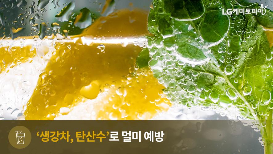 '생강차, 탄산수'로 멀미 예방