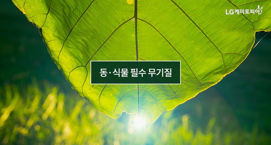 동·식물 필수 무기질