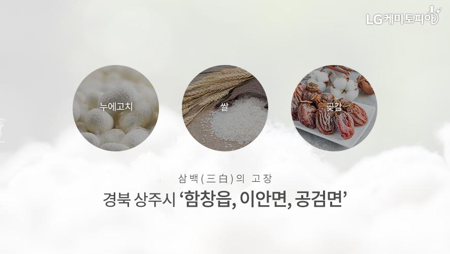 삼백(三白)의 고장 경북 상주시 '함창읍, 이안면, 공검면'
