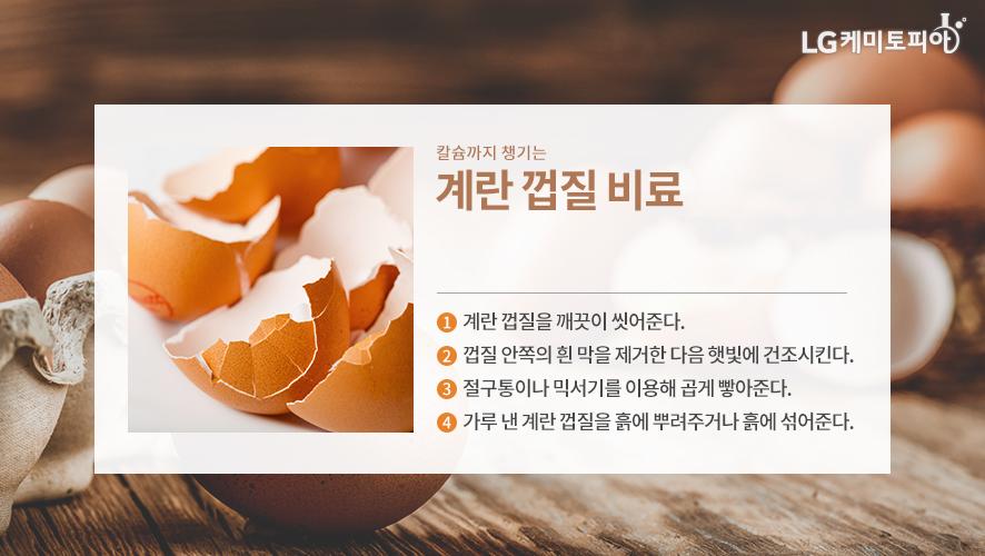 칼슘까지 챙기는 계란 껍질 비료 - ① 계란 껍질을 깨끗이 씻어준다. ② 껍질 안쪽의 흰 막을 제거한 다음 햇빛에 건조시킨다. ③ 절구통이나 믹서기를 이용해 곱게 빻아준다. ④ 가루 낸 계란 껍질을 흙에 뿌려주거나 흙에 섞어준다.