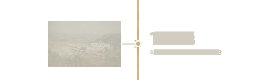 1970s 석유화학산업 진출과 여수공장