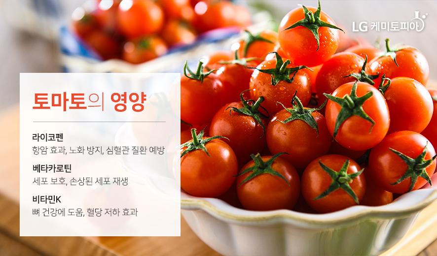 토마토의 영양