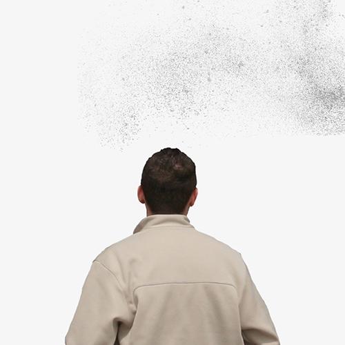 날벌레가 머리 위를 맴도는 이유는? 게시글 이미지