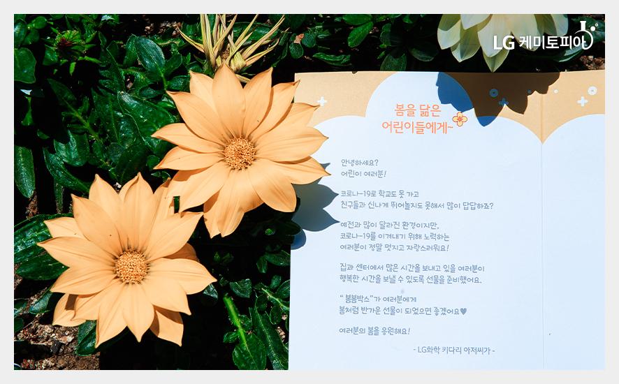 봄봄박스 편지
