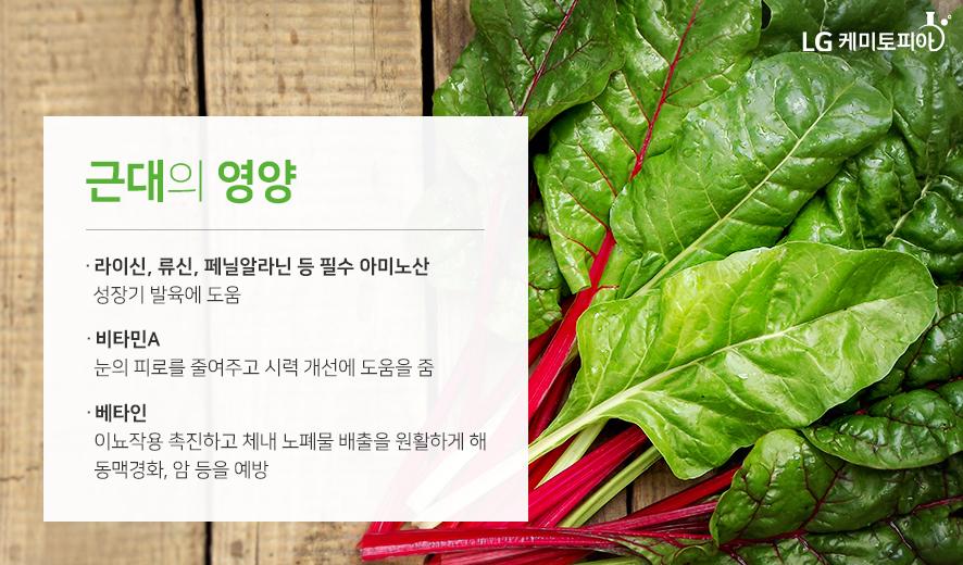 근대의 영양